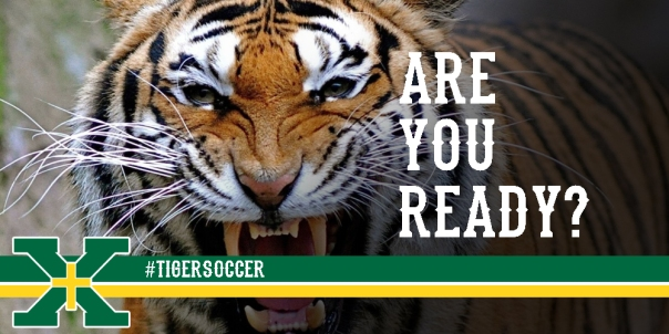 Angry Tiger Are You Ready