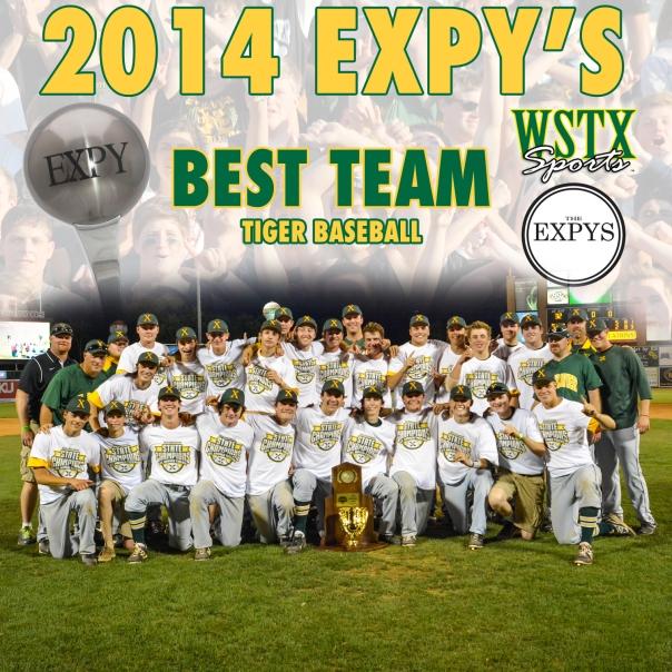 Tiger Baseball Best Team